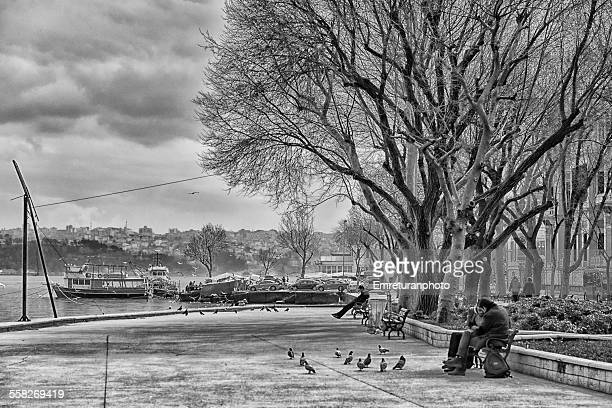 relaxing at park on a cloudy day - emreturanphoto stockfoto's en -beelden
