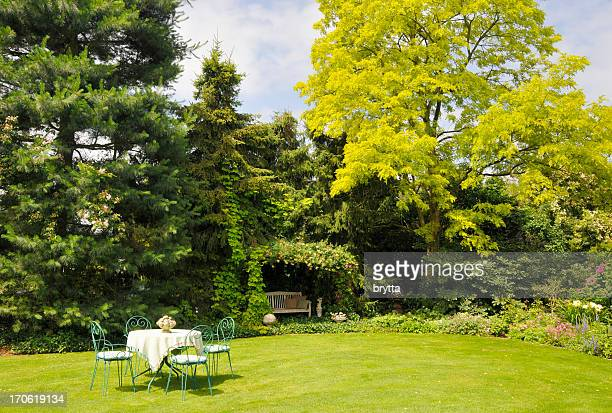 Relaxing in the garden with yellow pseudoacacia in spring
