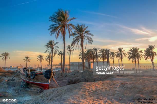 relaxing moment - iraq stock-fotos und bilder