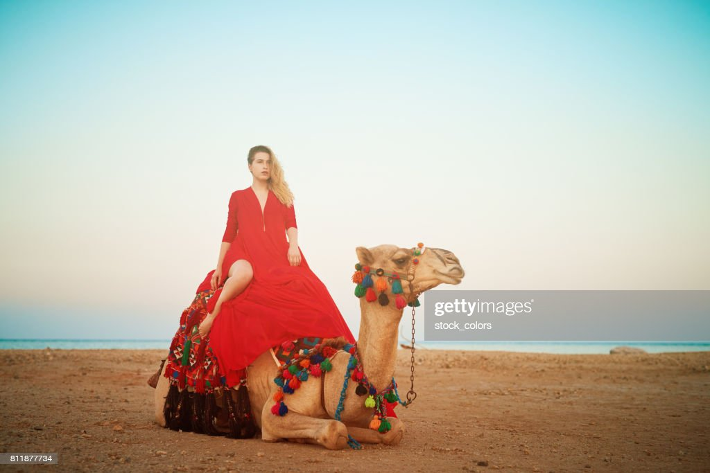 relaxing on camel ride : Stock Photo