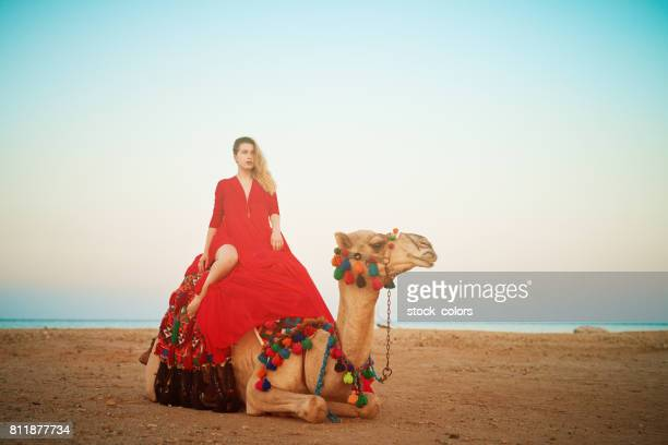 relaxing on camel ride - hot arab women stock photos and pictures