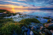 Relaxing summer river sunset with green grass and distant mountains