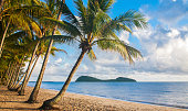 A relaxing view of a tropical beach with palm trees