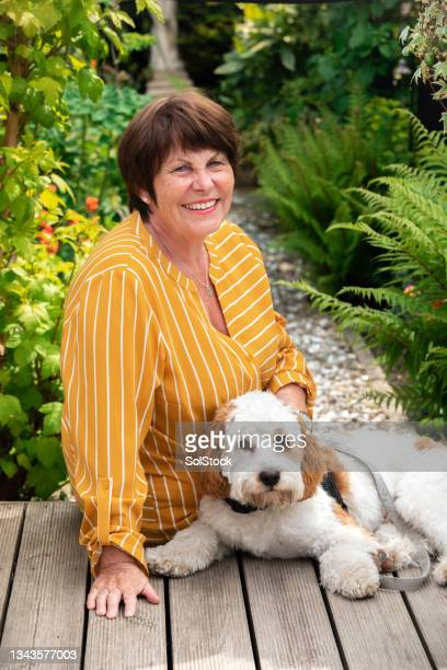 relaxing with her dog - morpeth stock pictures, royalty-free photos & images