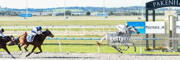 Reliable Magic ridden by Jessica Payne wins the Racingcom SV Maiden Plate at Racingcom Park Synthetic Racecourse on June 19 2018 in Pakenham Australia