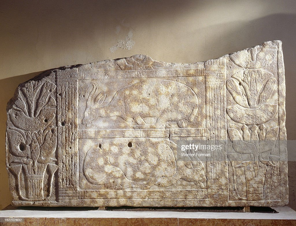 Relief carving depicting two bound oxen flanked by rows of lotus