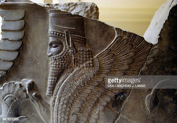Relief depicting Lamassu winged bull with a human face Iran Teheran MuzeIe IranE Bastan