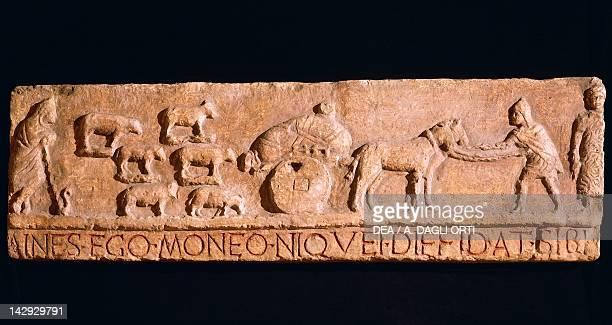 Relief depicting scene of transhumance from Sulmona Roman Civilisation 1st Century Rome Museo Della Civiltà Romana