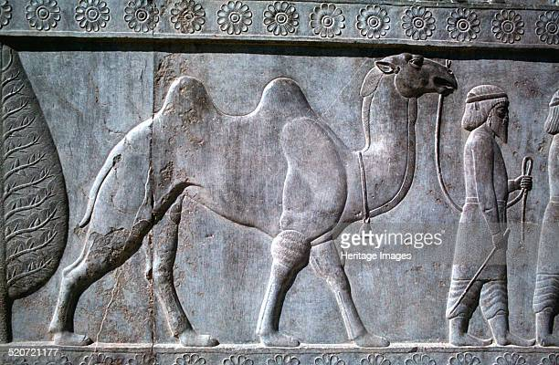 Relief of Parthians the Apadana Persepolis Iran The capital of Achaemenid Persia Persepolis was predominantly built during the reigns of the...