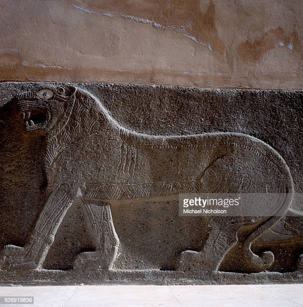 Relief sculpture of a lion at the Aleppo Museum in Syria