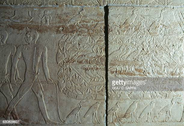 Relief with aviary Mastaba of Kagemni 2340 BC Necropolis of Saqqara Memphis Egypt Egyptian civilisation Old Kingdom Dynasty VI