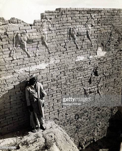 Reliefs of bull and dragon on a wall of Ishtar Gay Babylon Ishtar was an important Goddess of Babylon a goddess of the Earth and fertility