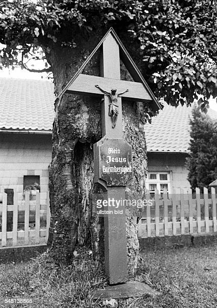 religion Christianity wayside cross at a tree Eifel near Monschau North RhineWestphalia