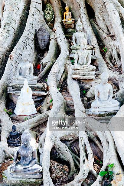 religion - thailandia stock photos and pictures
