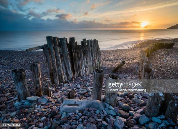 remains of a wooden groyne at porlock weir, sunrise in spring, somerset, england, united kingdom, europe - ポーロック ストックフォトと画像
