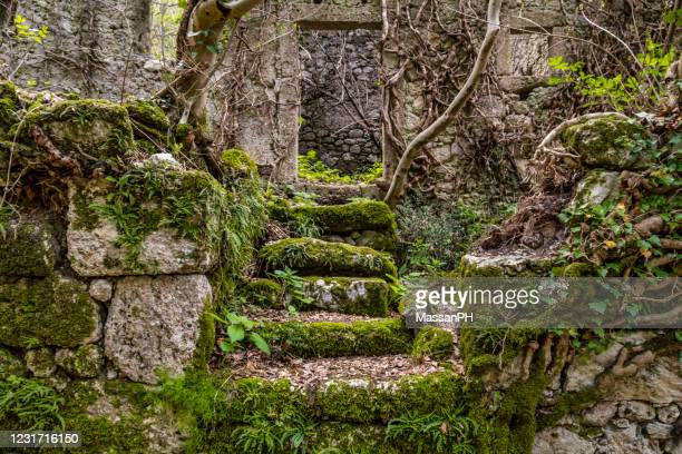 remains of an ancient stone house covered with vegetation - old ruin stock pictures, royalty-free photos & images