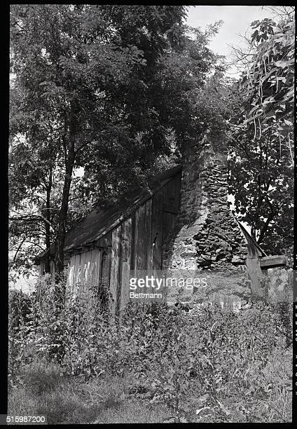 Remains of cabin at the Meriwether Lewis birthplace site on Locust Hill near Charlottesville Virginia Undated photograph