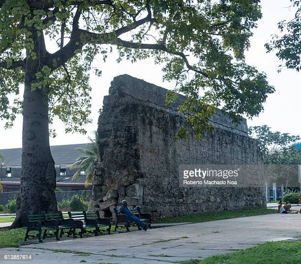 58441cbc65b Remains of Old Havana original wall A man relaxing on a bench under a tree  beside