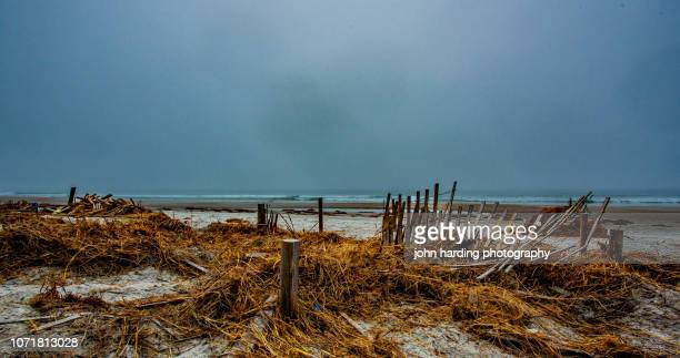 remains of the day - 2018 hurricane florence stock pictures, royalty-free photos & images