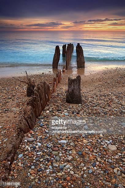 remains of wooden break water - イリノイ州 ハイランドパーク ストックフォトと画像