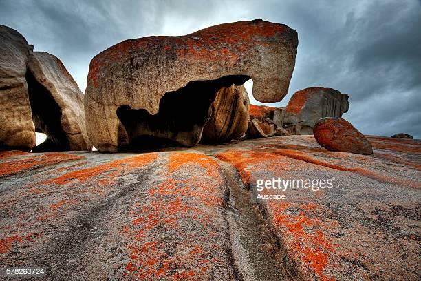 Remarkable Rocks winderoded granite blocks Flinders Chase National Park Kangaroo Island South Australia Australia