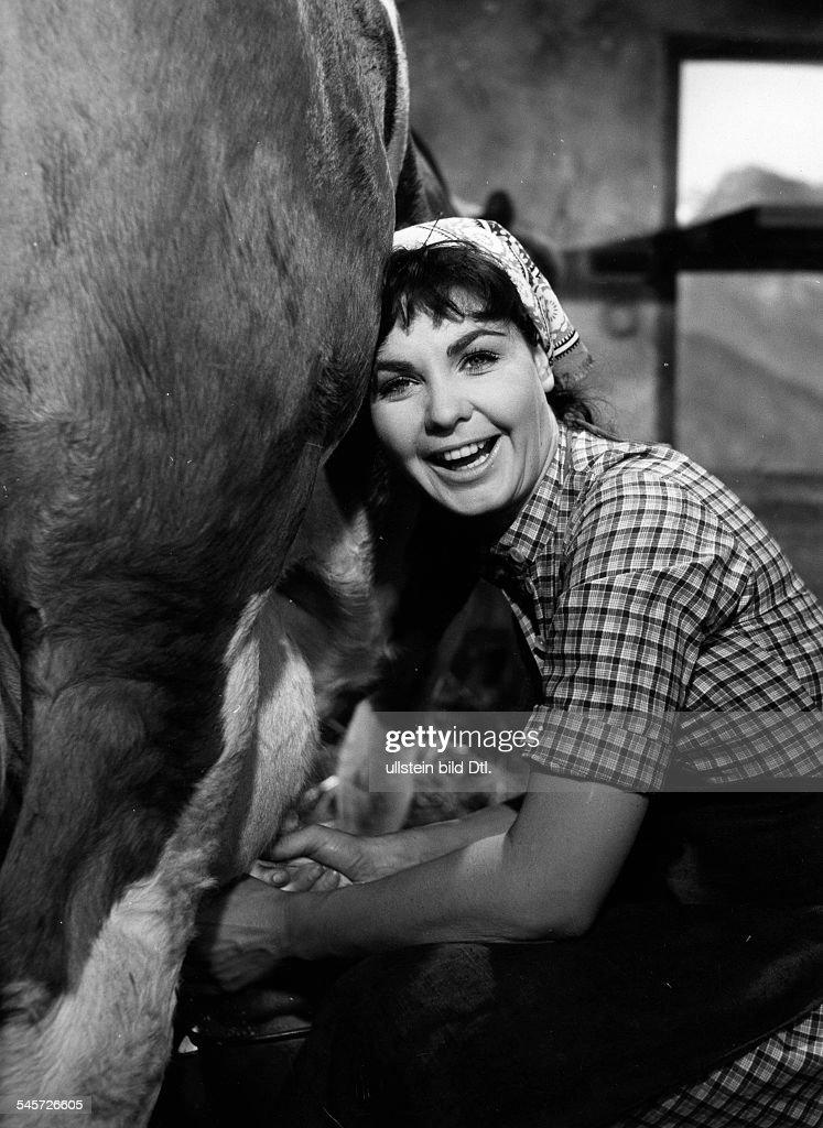 Remberg, Erika - Actress, Austria*15. Februar 1932- Milking a cow ...