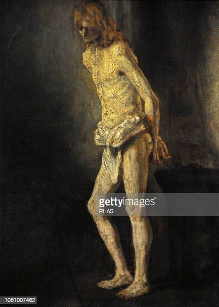 Rembrandt Rembrandt Harmensz van Rijn called Dutch painter and printmaker Nude Study of a Standing Youth ca1646 WallrafRichartz Museum Cologne Germany