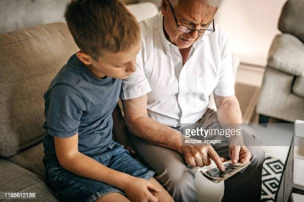 i remember every vacation with your granny - family tree stock pictures, royalty-free photos & images