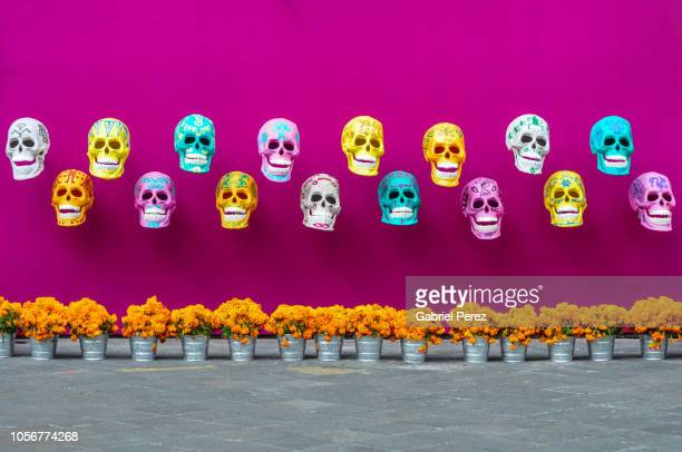 remembering  day of the dead in mexico city - sugar skull stock photos and pictures