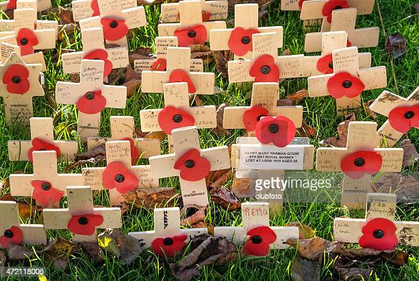 remembrance day crosses placed in the ground - lest we forget stock pictures, royalty-free photos & images