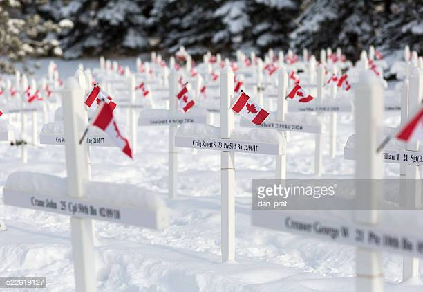 remembrance day memorial - remembrance day stock pictures, royalty-free photos & images