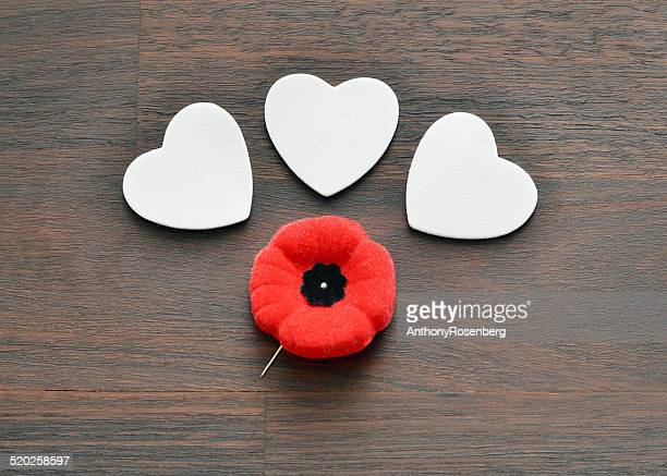 remembrance day - remembrance sunday stock pictures, royalty-free photos & images