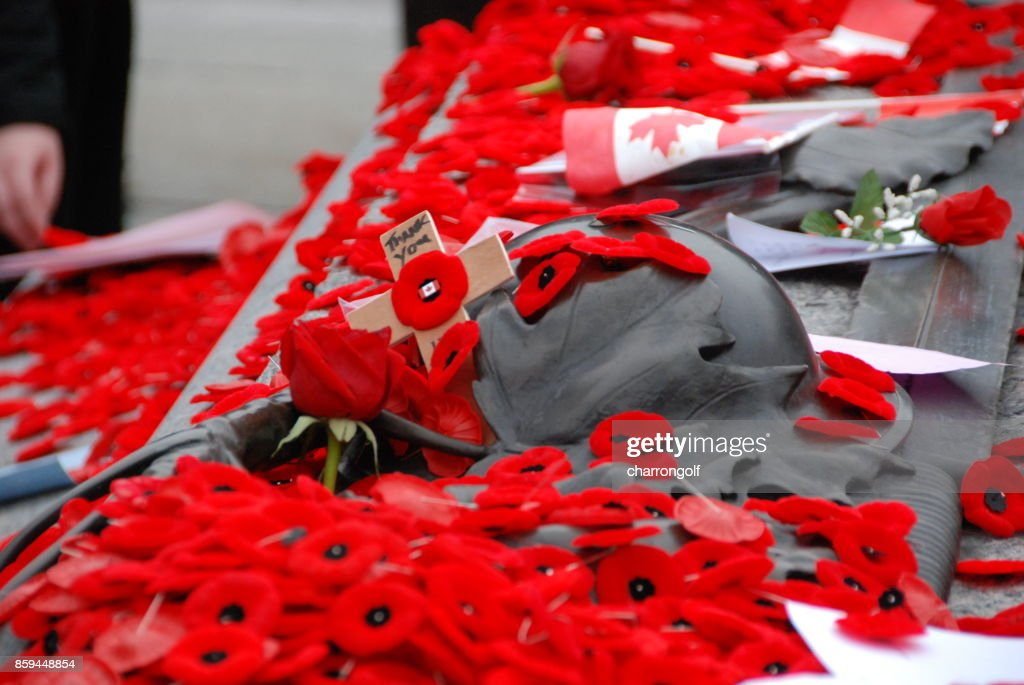 Remembrance Day : Stock Photo