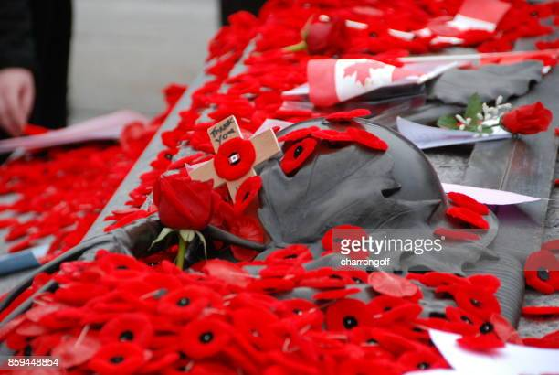 remembrance day - armistice day stock photos and pictures