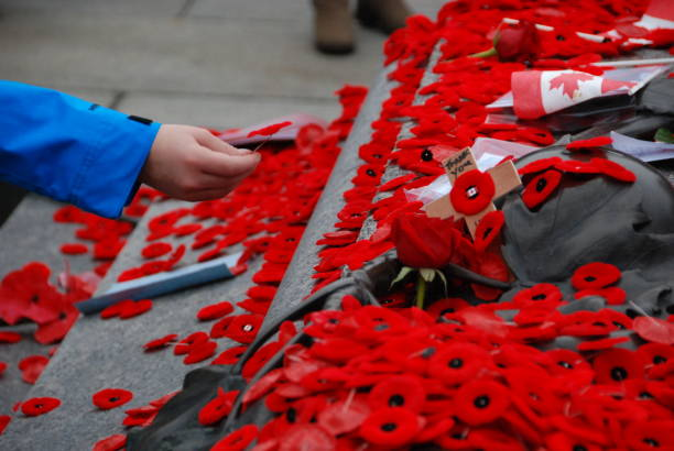 remembrance day - armistice day stock pictures, royalty-free photos & images