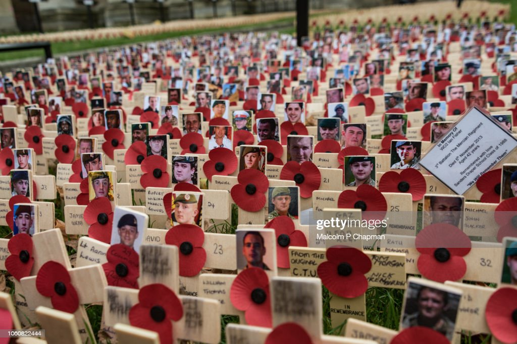 Remembrance Day, poppy and cross memorials for service personnel lost in wars : Stock Photo