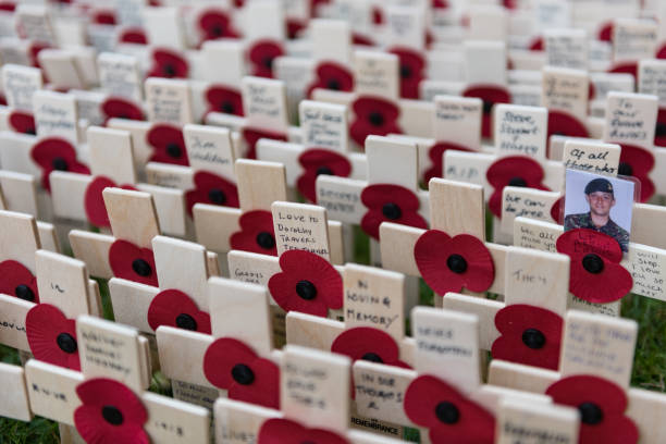 Remembrance Day, poppy and cross memorials for service personnel lost in wars