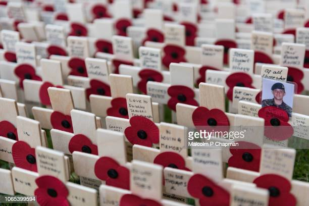 remembrance day, poppy and cross memorials for service personnel lost in wars - remembrance sunday stock photos and pictures