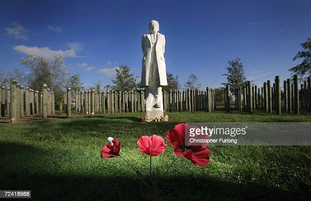 Remembrance poppies lay near the Shot at Dawn memorial which honours soldiers executed by British forces in World War I, on November 6, 2006 in the...