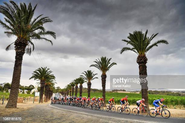 Remi Cavagna of France and Deceuninck QuickStep competes during stage two of the 2019 Tour Down Under on January 16 2019 in Norwood Australia