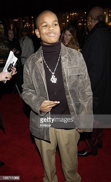 Remo Greene during Paid In Full Premiere New York at Loews 19th Street East Theather in New York City New York United States