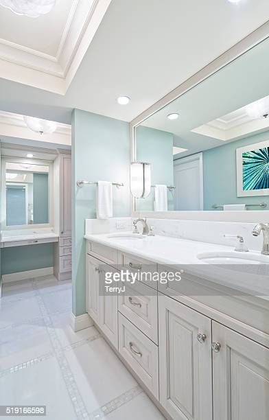 Remodeled Master Bathroom with Double Sink