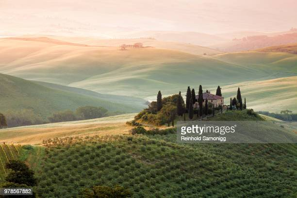 remote house on hill in rolling landscape at sunset, pienza, valdorcia, tuscany, italy - val d'orcia stock pictures, royalty-free photos & images