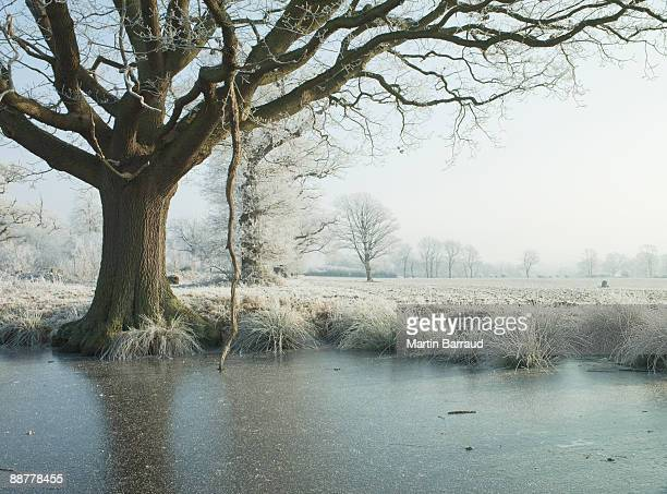 Remote snow-covered field and pond