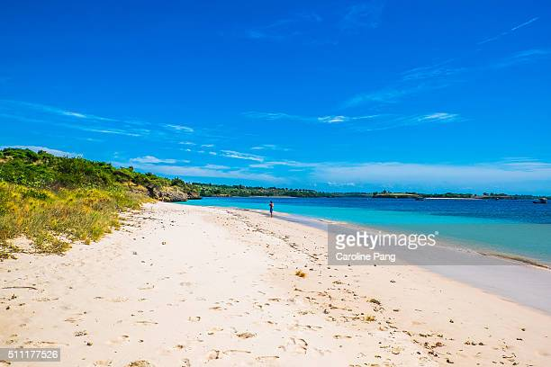 Remote tropical white sandy beach.