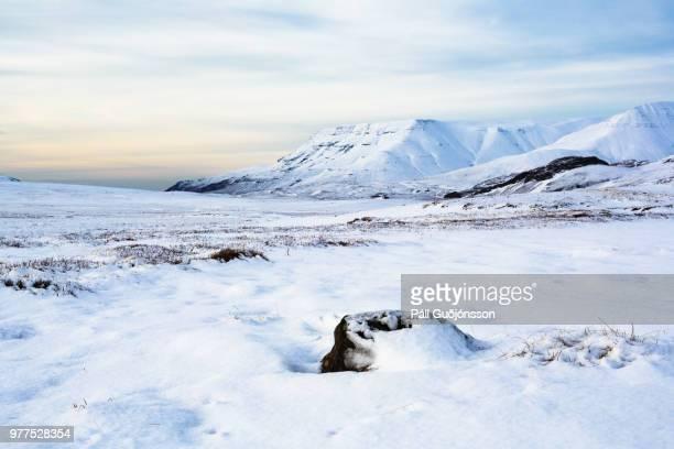 Remote winter landscape, Mosfellsbaer, Iceland