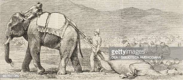 Removing a dead camel from the camp at Jumrood Second AngloAfghan war illustration from the magazine The Graphic volume XIX no 485 March 15 1879