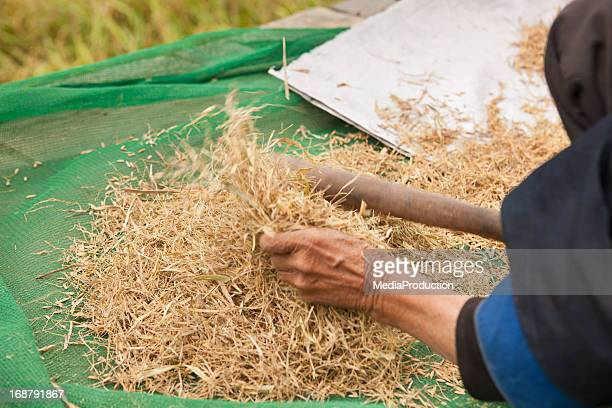 removing the husk of rice