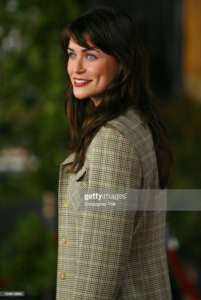 Rena Sofer during 'Harry Potter and The Chamber of Secrets' Premiere at Mann Village Theatre in Westwwood, CA, United States.