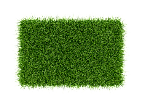 3D Rendering green grass field isolated on white background 947369014